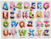 Alphabets - Capital with pictures (knobbed)